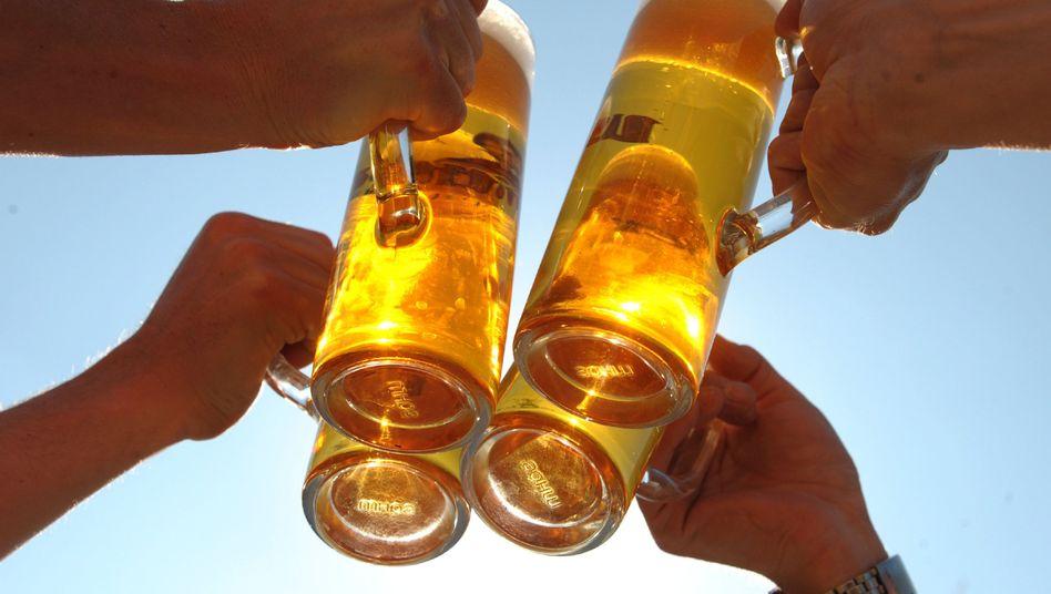 Pflanzengift-Rückstände: Gefährlich wird deren Konzentration wohl erst bei 1000 Liter Bier pro Tag - doch eine Gefahr für das Image des deutschen Bieres ist die Glyphosat-Affäre allemal