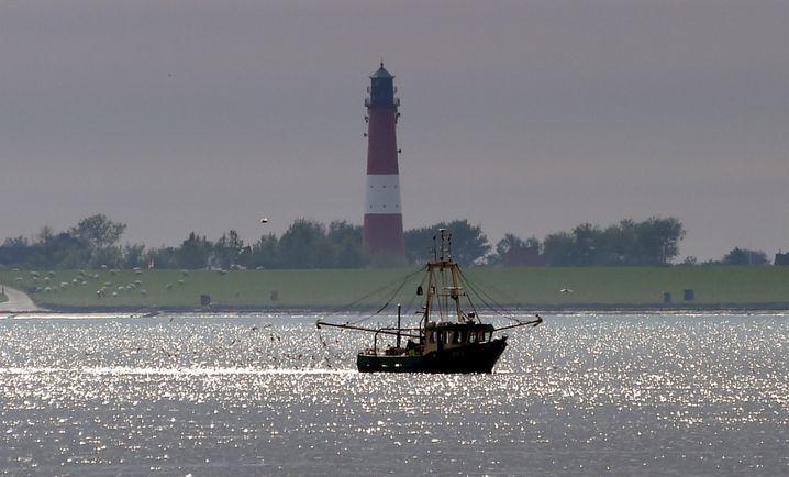 Fischkutter und Leuchtturm: Was braucht man mehr für ein norddeutsches Insel-Feeling?