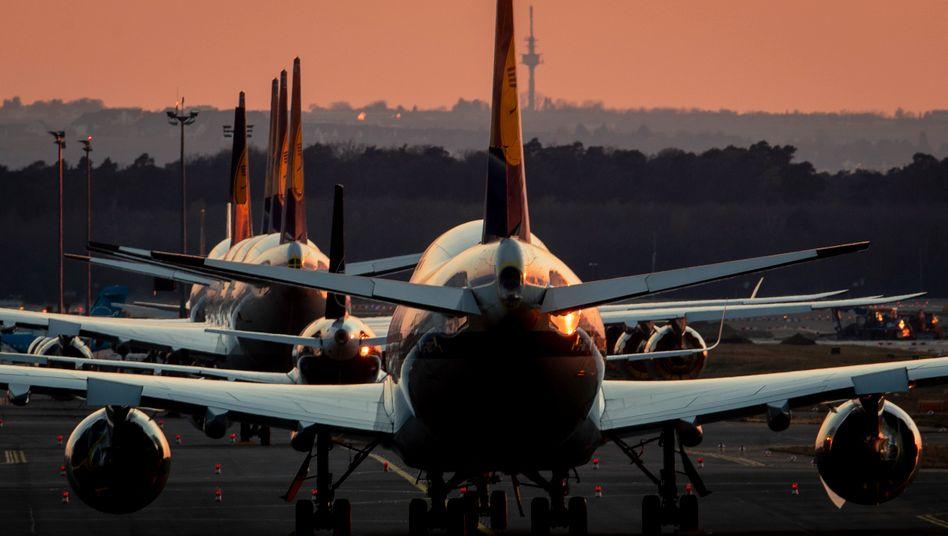 Auf dem Frankfurter Flughafen geparkte Lufthansa-Flugzeuge