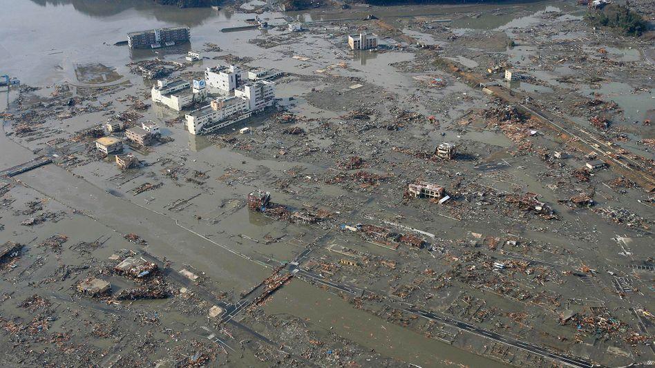 Vom Schlamm überrollt: Weite Teile der Provinz Myagi sind zerstört, tausende Menschen werden vermisst