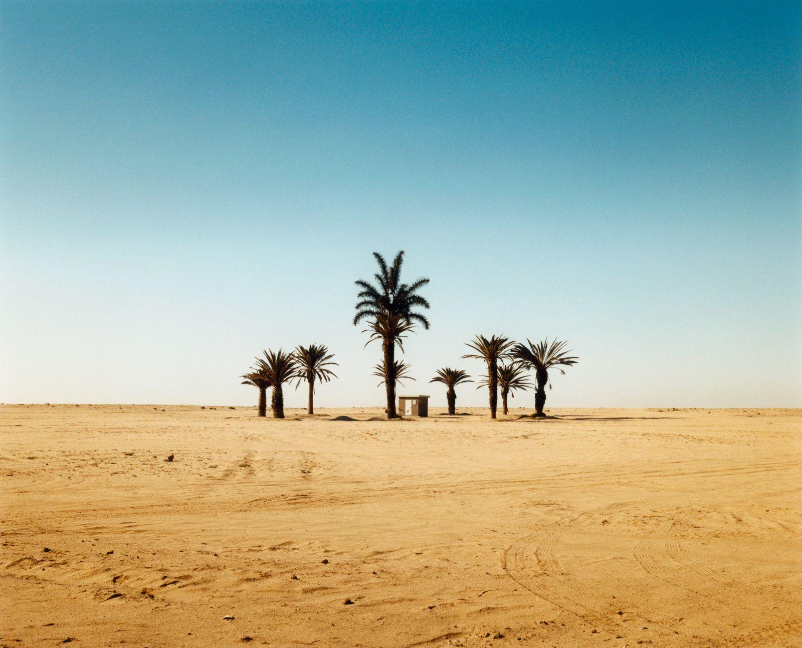 NICHT MEHR VERWENDEN! - Oase / Wüste / Sand / Palmen