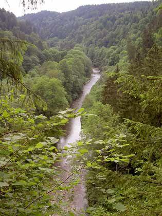 Seit 1939 Naturschutzgebiet: Die Wutach hat sich in den vergangenen 20.000 Jahren tief ins Tal gegraben