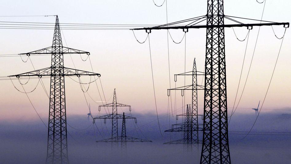 Deutscher Strommarkt: Der Anteil von Ökostrom im deutschen Strommix liegt knapp hinter Strom aus Braunkohle - und vor der Kernkraft