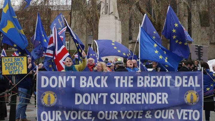 Brexit-Abstimmung: Lauter und kreativer Protest vor dem Unterhaus