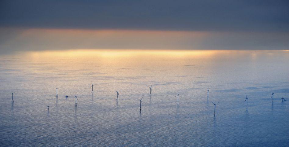 Offshore-Windpark in der Nordsee: Eon will in den kommenden fünf Jahren sieben Milliarden Euro investieren
