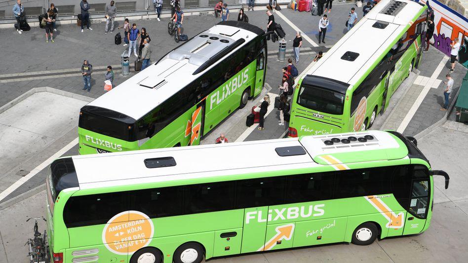FlixBus auf Wachstumskurs: Übernahme von Eurolines geplant