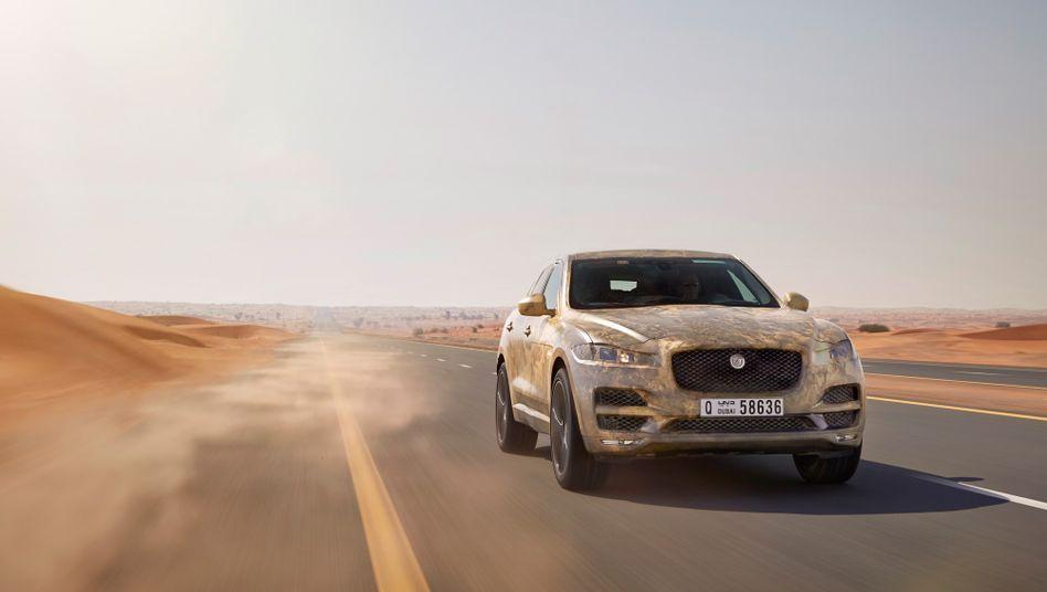 SUV-Neuentwicklung: Der Jaguar F-Pace soll wieder mehr junge, solvente Käufer für die Marke Jaguar begeistern
