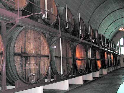 Gemeinsame Weinproduktion: Winzergenossenschaft KWV