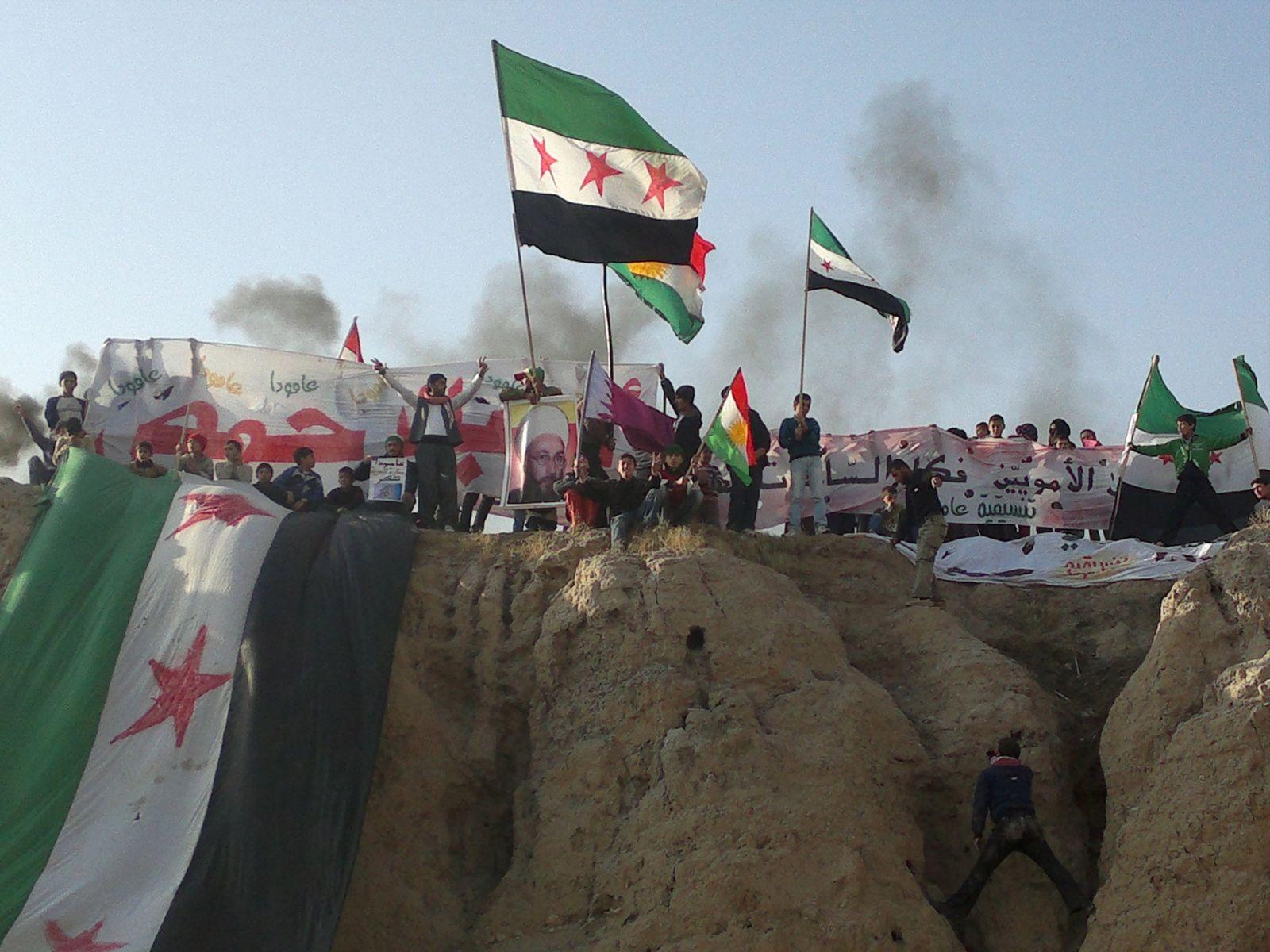 syrien demo fahnen