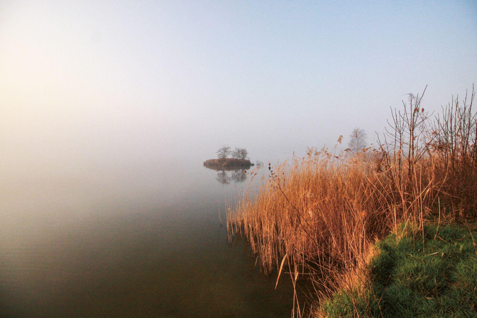 BUCH Martin Burger / Gehen auf alten Wegen / Am Teich bei Bernhardsthal