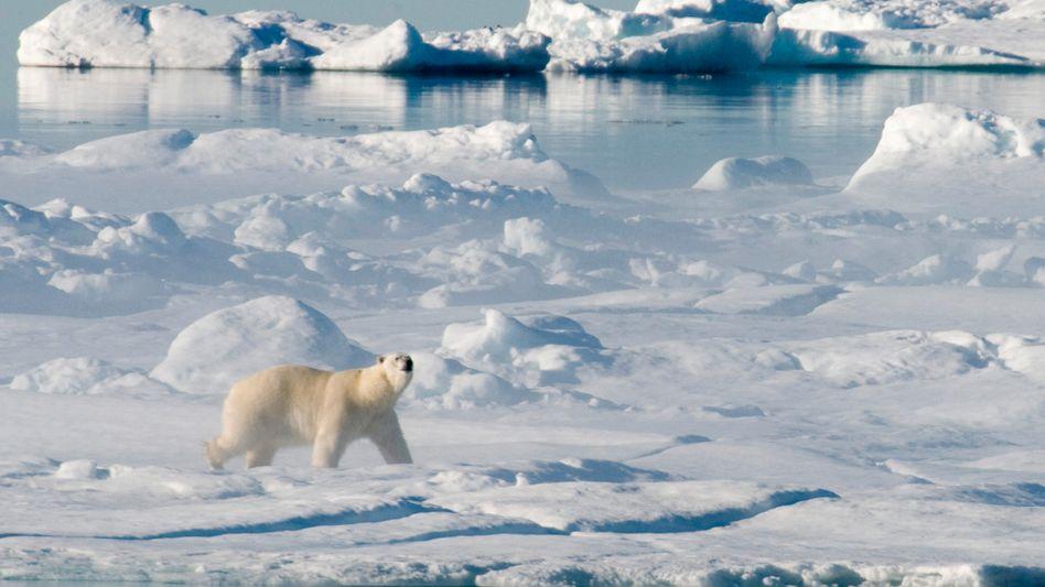 Schmelzende Eismassen: Es gibt billige, saubere Energie - und Anlass zur Hoffnung