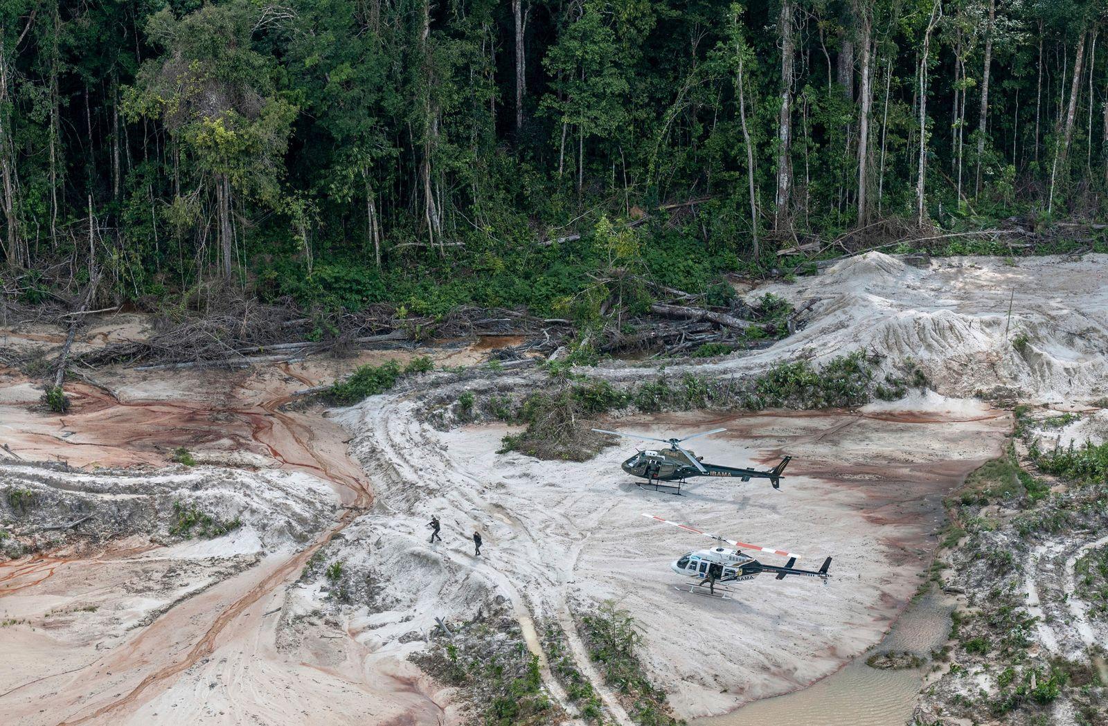 Brasilien / Amazonas / Holzfäller