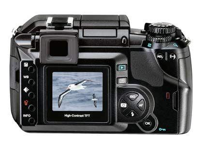 Olympus digitale Spiegelreflexkamera von hinten: TTL-Spiegel-Sucher-System und Umkehr-(Porro)-Prisma machen sie für Hobby-Fotografen zum Ereignis