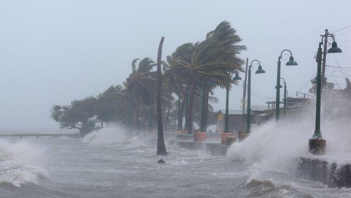 """Hurrikan: """"Irma"""" fordert erste Todesopfer"""