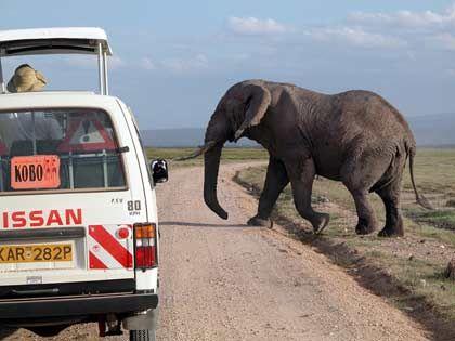 Die Pisten von Afrika: Sie bieten spektakuläre Ausblicke, sind aber kaum geeignet für Tempo 300
