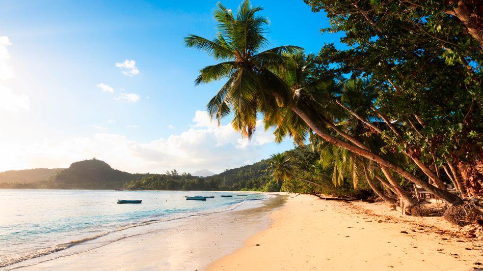 """Sommer, Sonne, Strand: L'tur erwartet die """"wahrscheinlich beste Last-Minute-Saison der letzten fünf Jahre""""."""