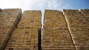 Diese unbekannten Riesen profitieren vom Holzpreisboom