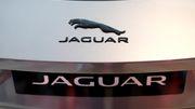 Neuer Chef will Jaguar zur reinen Elektromarke ummodeln