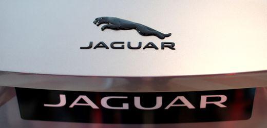 Jaguar Land Rover, Peugeot, Volkswagen: Chipkrise legt Autoproduktion lahm