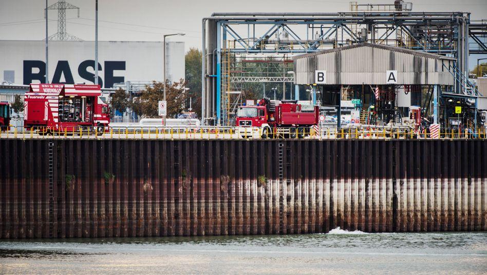 BASF in Ludwigshafen am Rhein: Der Fluss führt wegen der Hitze immer weniger Wasser, auch für BASF wird das zum Problem