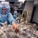 Warum Europa 25 Prozent mehr an Biontech zahlt