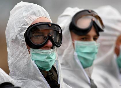 Angst vor Vogelgrippe: Bundeswehrsoldaten hatten im Februar vergangenen Jahres auf der Insel Rügen zahlreiche tote Vögel vom Strand aufgesammelt, die sich zuvor mit dem Vogelgrippe-Virus infiziert hatten