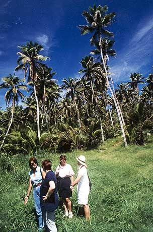 Das Paradies hat einen Namen: Die Seychellen sind Treffpunkt wohlhabender Naturfreunde