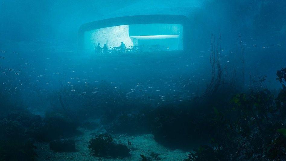 WETLOOK Dinner mit Aussicht, fünfeinhalb Meter unter dem Meeresspiegel ...