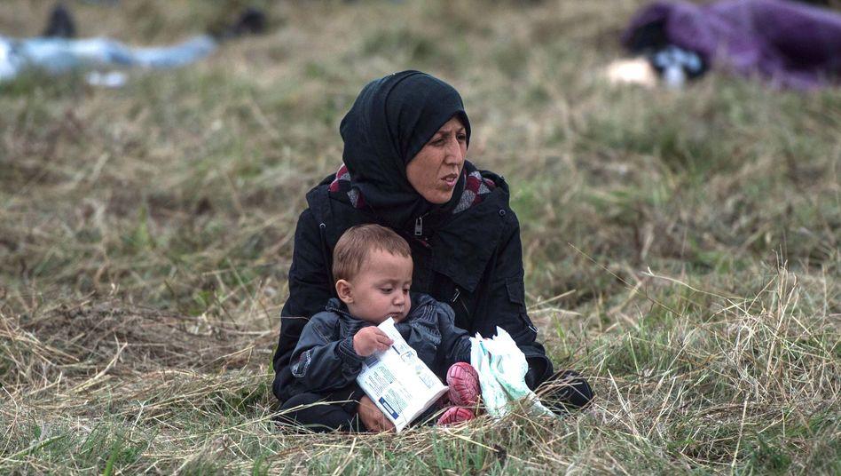 Migrantin mit Kind in Kroatien: Polizeichef fordert Zaun an deutsch-österreichischer Grenze