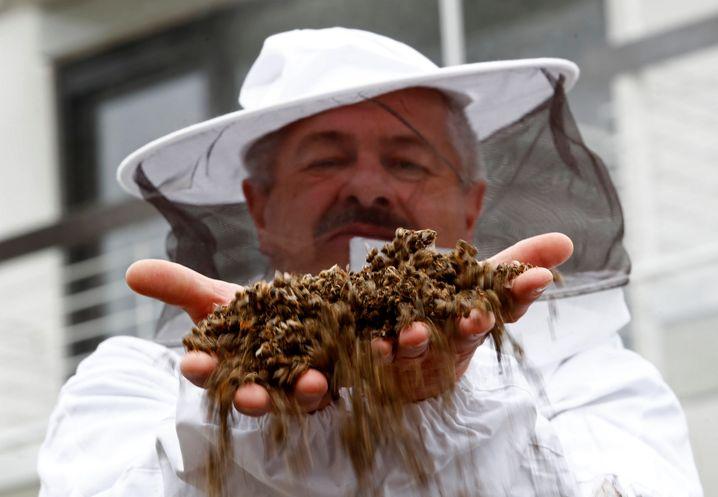 Ein Glyphosat-Gegner hält vor Beginn der Bayer-HV in Bonn tote Bienen hoch. Die Vizepräsidentin des Deutschen Berufs- und Erwerbsimkerverbands schlägt Bayer-Chefkontrolleur Wenning einen Jobwechsel vor