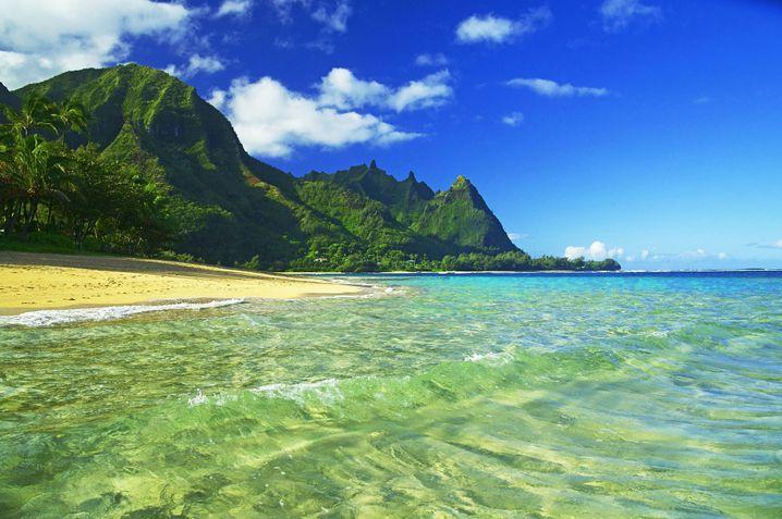 Kauai : Hier hat sich der Facebook-Chef eingekauft