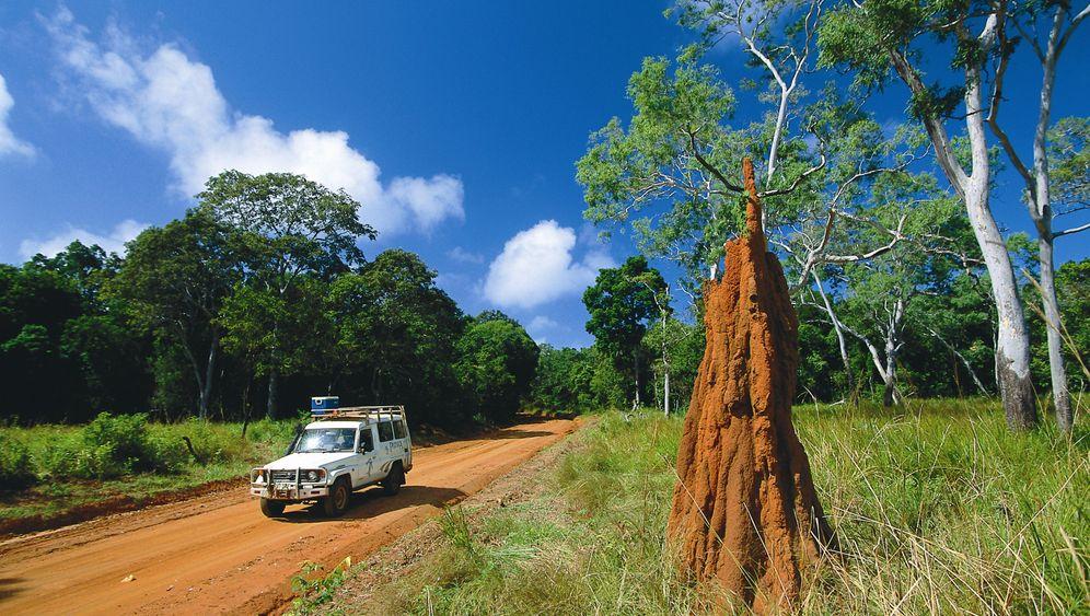 Australien: Safari durch die Mareeba Wetlands