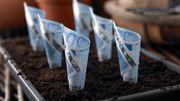 Rentenversicherung will Alternative zu Riester