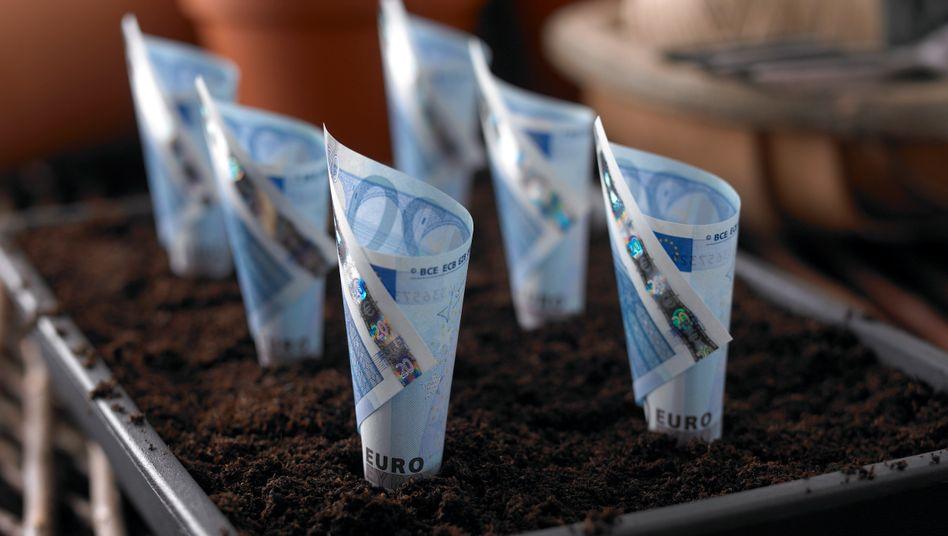 Garantiert und langfristig: So soll sich das Geld von Lebensversicherten über die Zeit vermehren. Doch viele Unternehmen haben Probleme